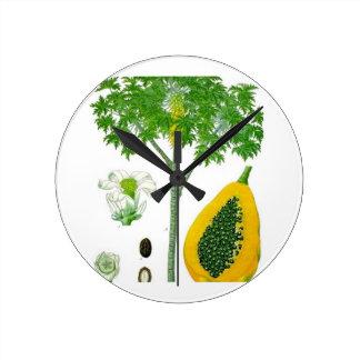 Papaya Reloj