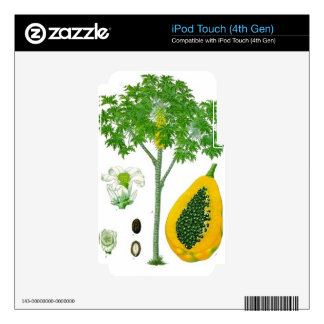 Papaya iPod Touch 4G Skins