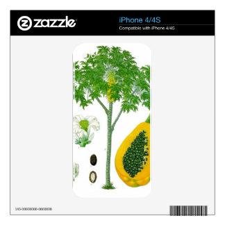 Papaya Skins Para iPhone 4