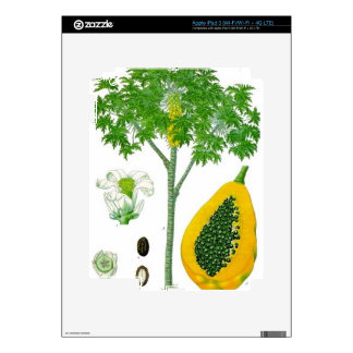 Papaya iPad 3 Skins