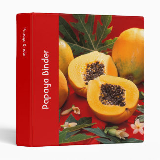 Papaya Vinyl Binder