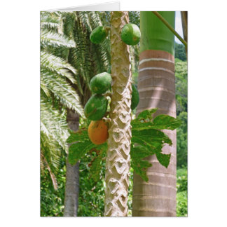 Papayas and Palms Card