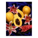 Papayas hawaianas tarjeta postal