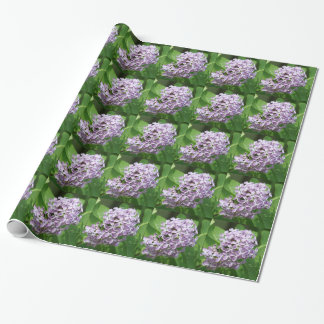 papel de embalaje con la foto del lila púrpura papel de regalo