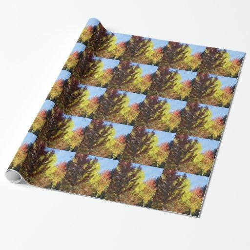 Papel de embalaje de los colores del otoño papel de regalo