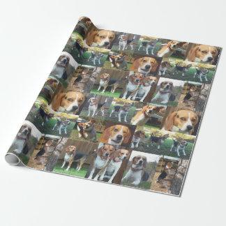Papel de embalaje del montaje del beagle a gritar papel de regalo
