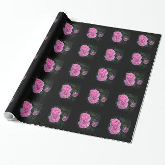 Papel de embalaje inglés rosado de los rosas de