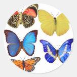 papel de la mariposa pegatina redonda
