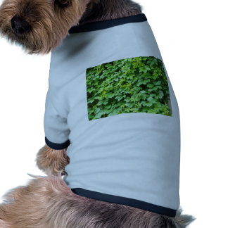Papel pintado de las hojas de uvas camiseta con mangas para perro