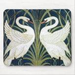 Papel pintado del cisne y de la precipitación y de tapetes de raton