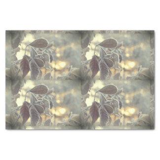 Papel seda escarchado de las hojas papel de seda pequeño
