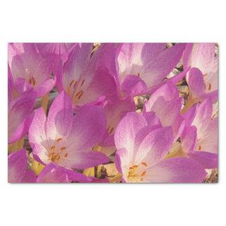 Papel seda floral del azafrán de otoño papel de seda pequeño