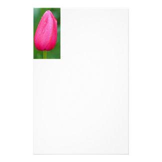 papelería papel de cartas