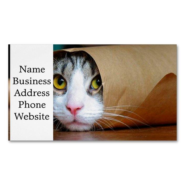 Paper Cat Funny Cats Cat Meme Crazy Cat Business Card Magnet Zazzle Com