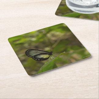 Paper Coaster #Venezuela Butterfly amramirezy