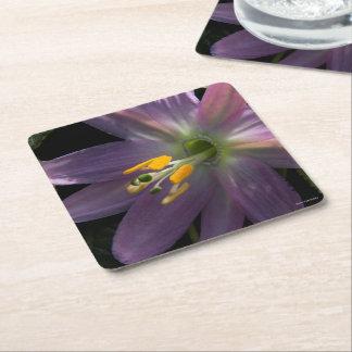 Paper Coaster #Venezuela Flower amramirezy