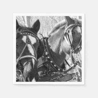 Paper Coasters - Beautiful Horses Standard Cocktail Napkin