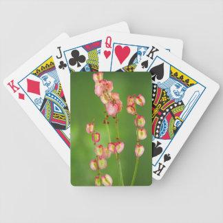 Paper Hearts (Rumex Woodii), Ukhahlamba Bicycle Playing Cards