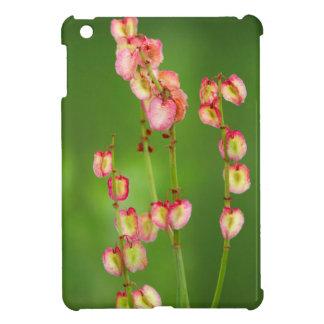 Paper Hearts (Rumex Woodii), Ukhahlamba iPad Mini Covers