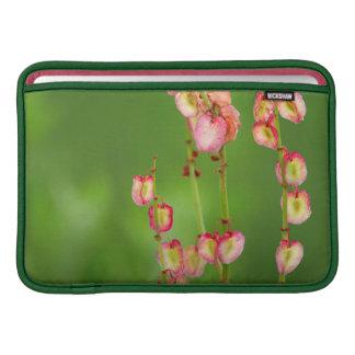 Paper Hearts (Rumex Woodii), Ukhahlamba MacBook Sleeve
