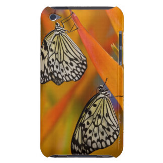 Paper Kite Butterflies (Idea leuconoe) on flower iPod Touch Covers