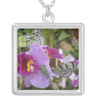 Paper Kite Butterflies (Idea leuconoe) on Silver Plated Necklace