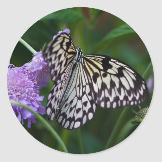Paper Kite Butterfly Classic Round Sticker