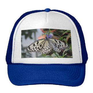 Paper Kite Butterfly Trucker Hats