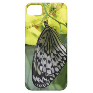 Paper Kite Butterfly iPhone 5 Case