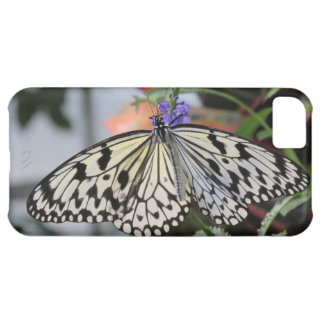 Paper Kite Butterfly iPhone 5C Case