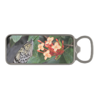 Paper Kite Butterfly Magnetic Bottle Opener