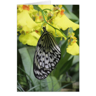 Paper Kite Butterfly Notecard Stationery Note Card