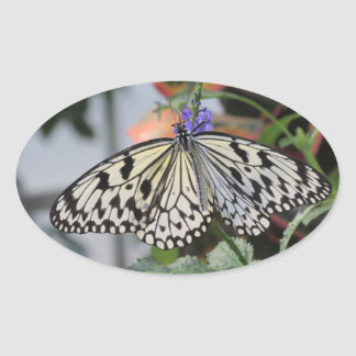 Paper Kite Butterfly Oval Sticker