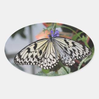 Paper Kite Butterfly Oval Sticker