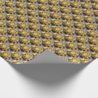 Paper of gift 76´2 x 1´82 prostrate oneself wrapping paper