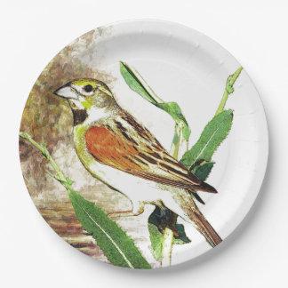 Paper plate  fall pretty song bird