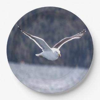 Paper plate Gull #1