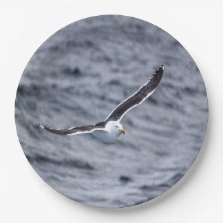 Paper plate Gull #2