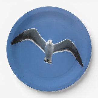 Paper plate Gull #3
