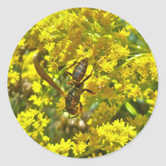 Paper Wasp on Goldenrod Items Classic Round Sticker