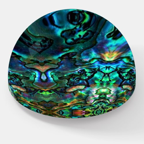 Paper Weight Abalone