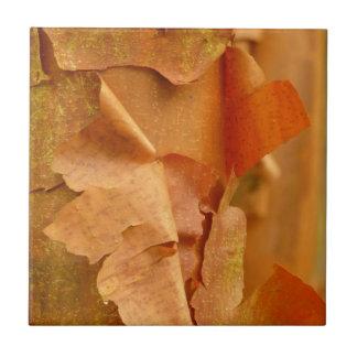 Paperbark Maple Tile
