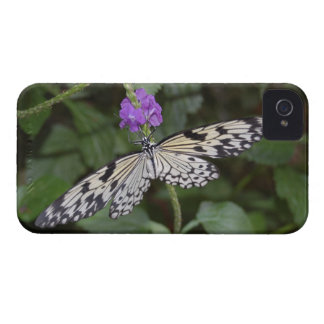 Paperkite Butterfly iPhone 4 Cover