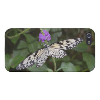 Paperkite Butterfly iPhone SE/5/5s Cover