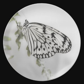 Paperwhite Butterfly Plate