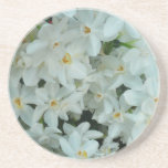 Paperwhite Narcissus Delicate White Flowers Drink Coaster