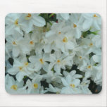 Paperwhite Narcissus Delicate White Flowers Mouse Pad