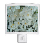 Paperwhite Narcissus Delicate White Flowers Night Light