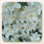 Paperwhite Narcissus Delicate White Flowers Square Paper Coaster