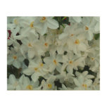 Paperwhite Narcissus Delicate White Flowers Wood Print